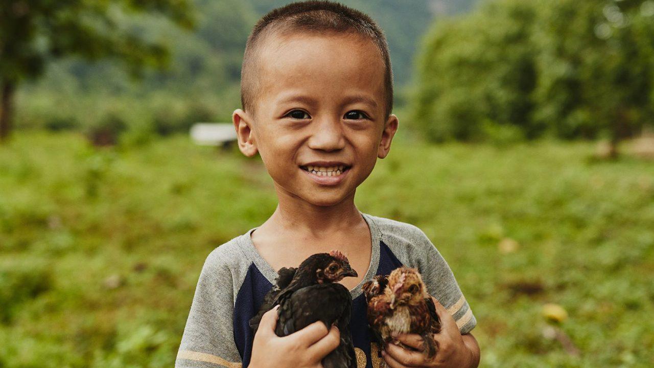 Compassion-_image-box